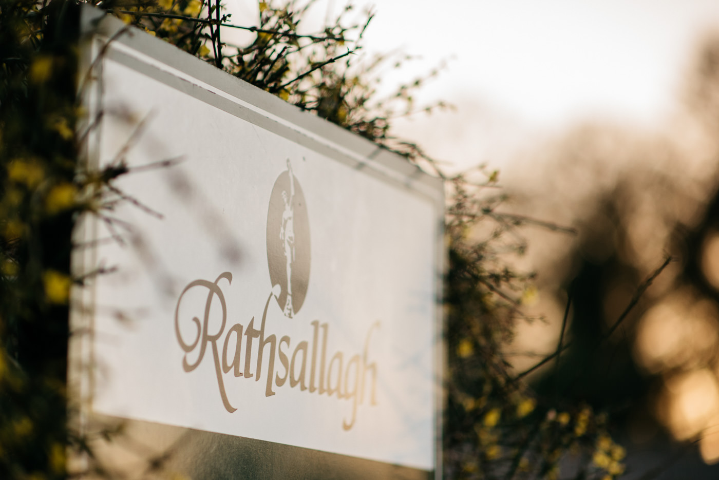 Rathsallagh House Weddings 52